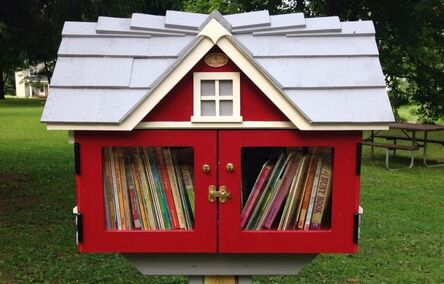 Picture is of a small house about the size of a mailbox.  It is red with a grey roof and is stationed in a park.   This small library is full of books.